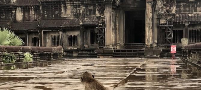 Día 171: Tomb Raider (Siem Reap)
