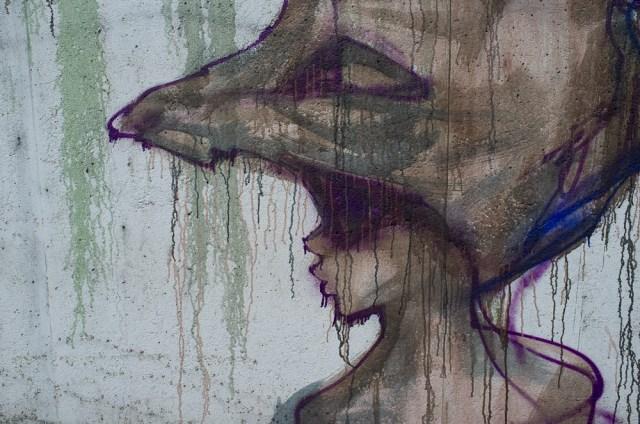 2013-05-25 X100 Graffiti Bad Vilbel Herakut Bahndamm 033