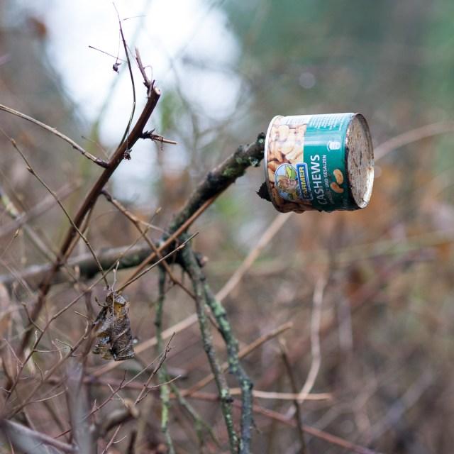 2012-12-28 D700 Waldspaziergang Wächtersbach 137