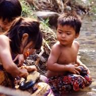 1991 D200 Thailand Diascan 035