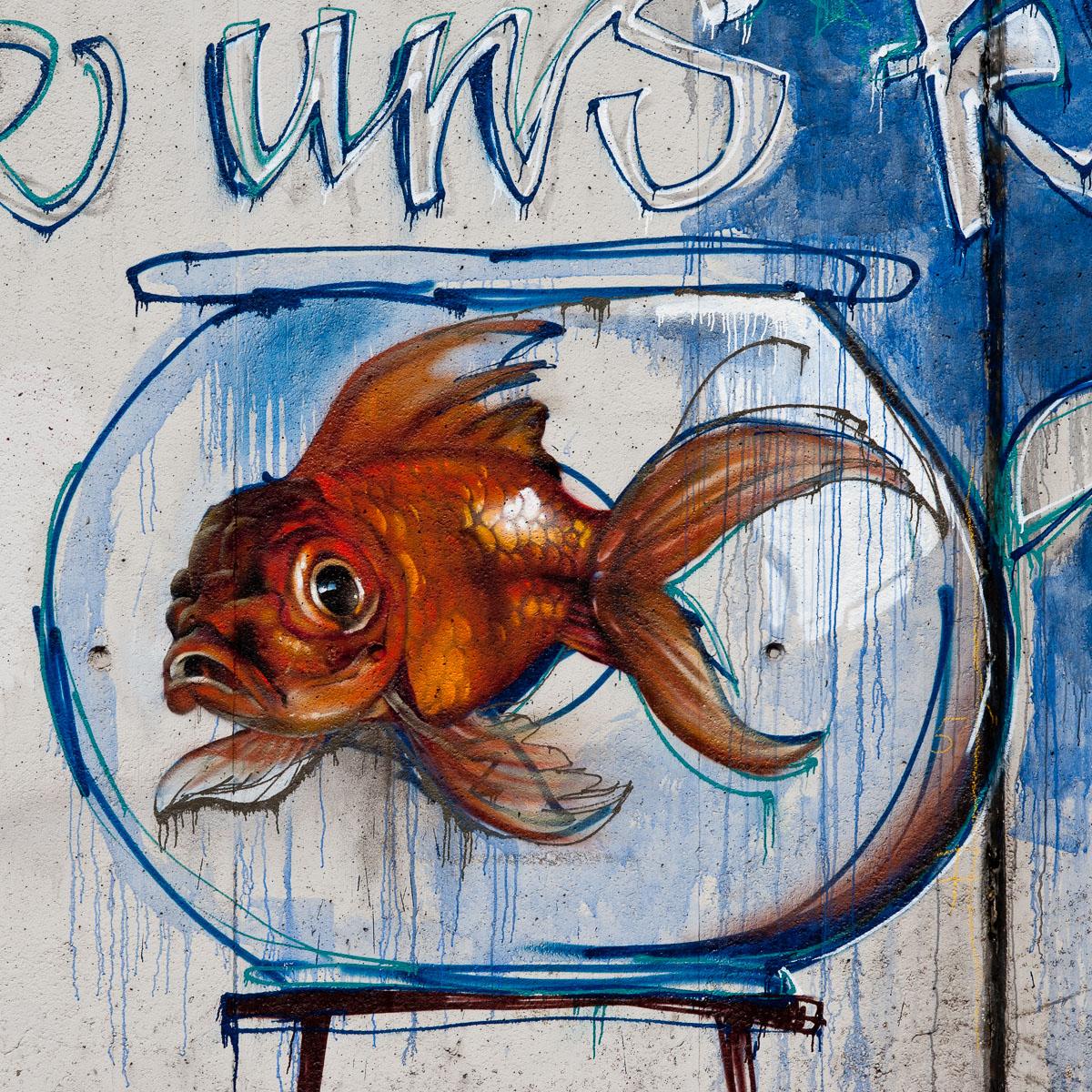 2009-07-09 D700 Graffiti Bad Vilbel 024
