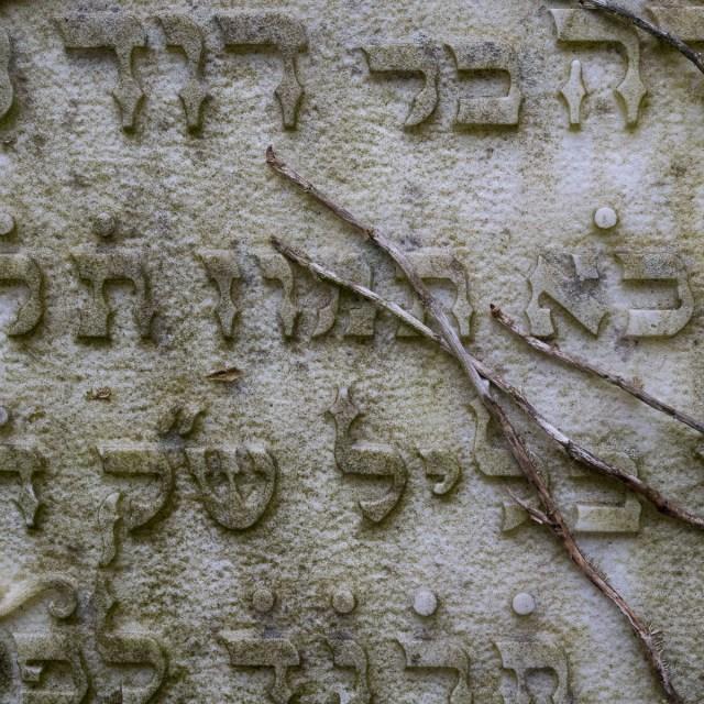 Frankfurt Jüdischer Friedhof