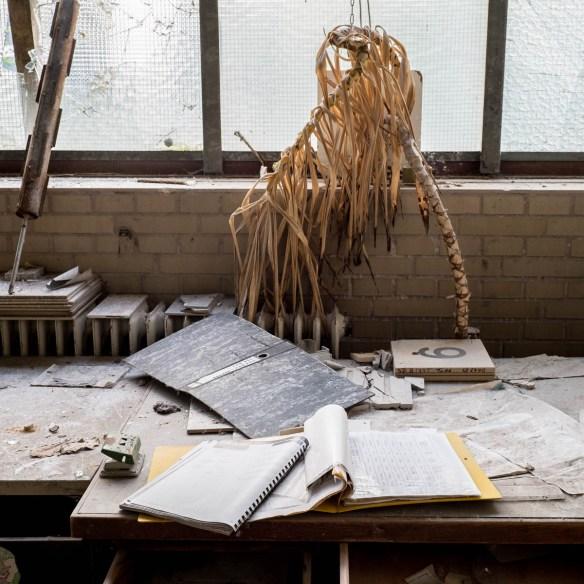 Lost Places Von Zimmerpflanzen und Tod