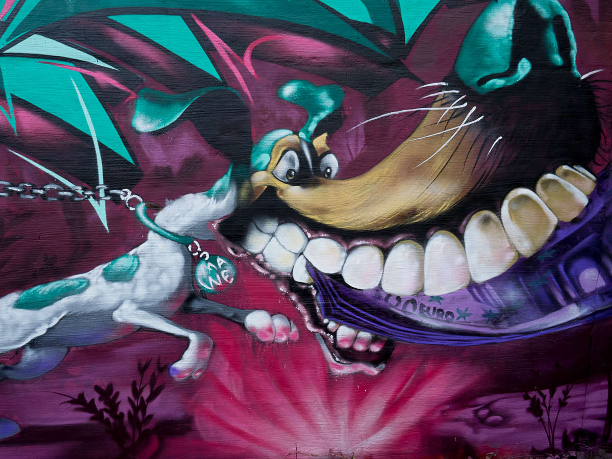 "Meeting of Styles Wiesbaden 2017 ""Age of Abundance"" – Finals (08) Grow Up"