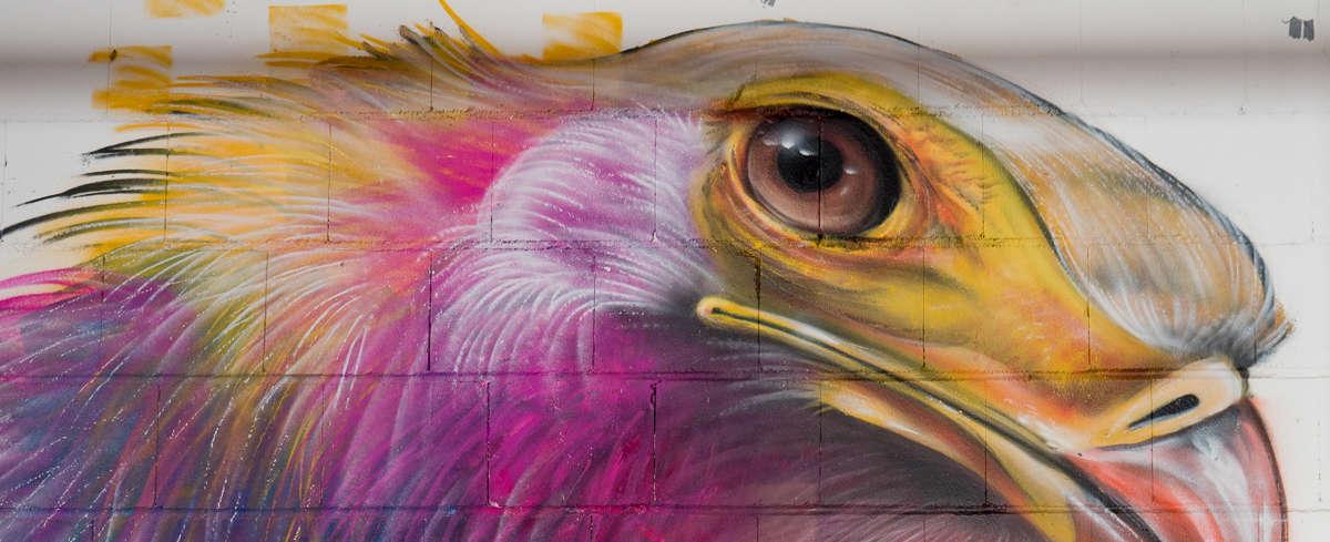 Graffiti, Streetart und andere Kunst in Frankfurt im OST>STERN