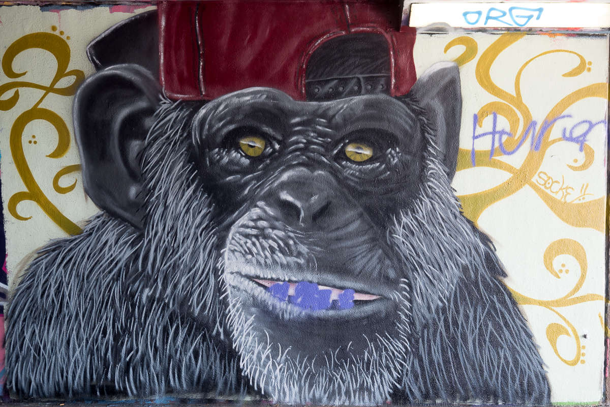 Frankfurt – Graffiti am Ratswegkreisel (96) – Update Oktober 2018