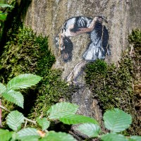 Stencils on trees by JPS
