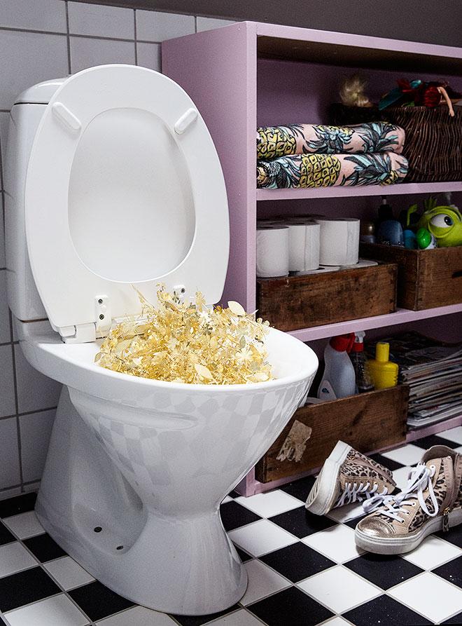 golden-toilet-dosfamily