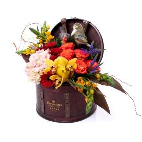Cufar flori si pasari primavaratice, doar 459 RON