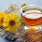 Лечение успокоительными травами: что поможет успокоиться
