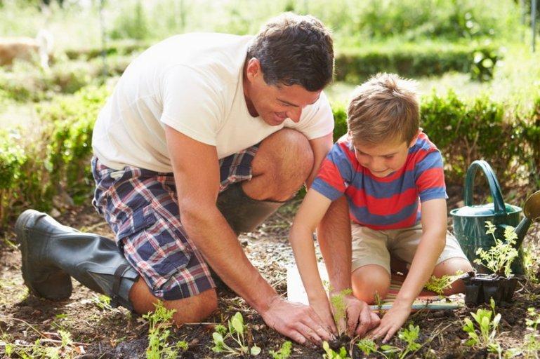 Садоводство вместе с ребенком: чем оно может быть полезным при воспитании
