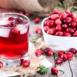 Как сделать ягодный морс в мультиварке