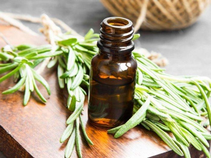 Лечение маслом тимьяна