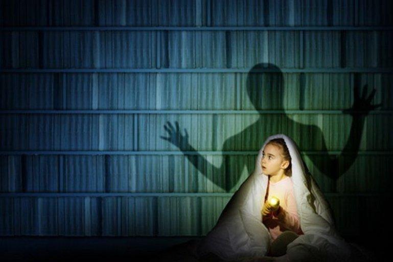 Свет влияет на обучение, память и фобии