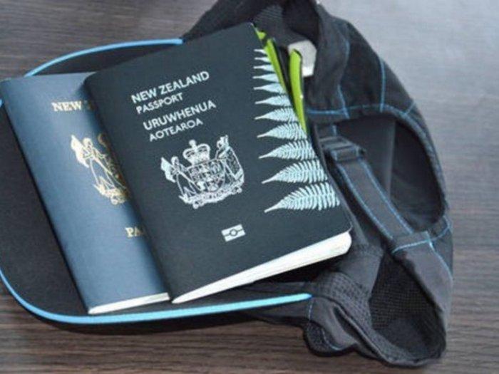 Каких цветов бывают паспорта и что каждый из них означает?