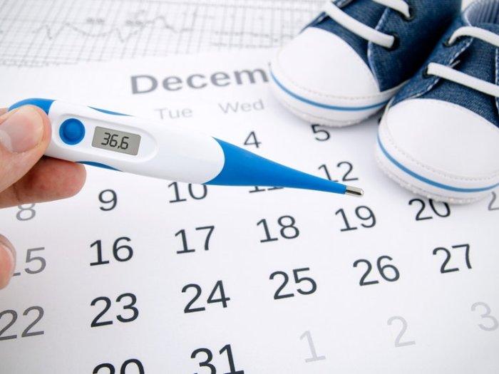 Овуляция: 6 способов вычислить день зачатия
