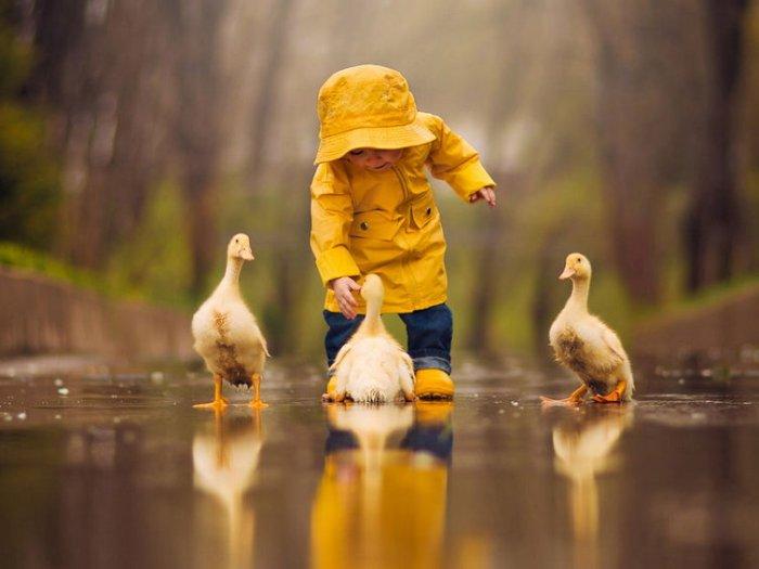 Актуально: чем занять ребенка в дождливую погоду?