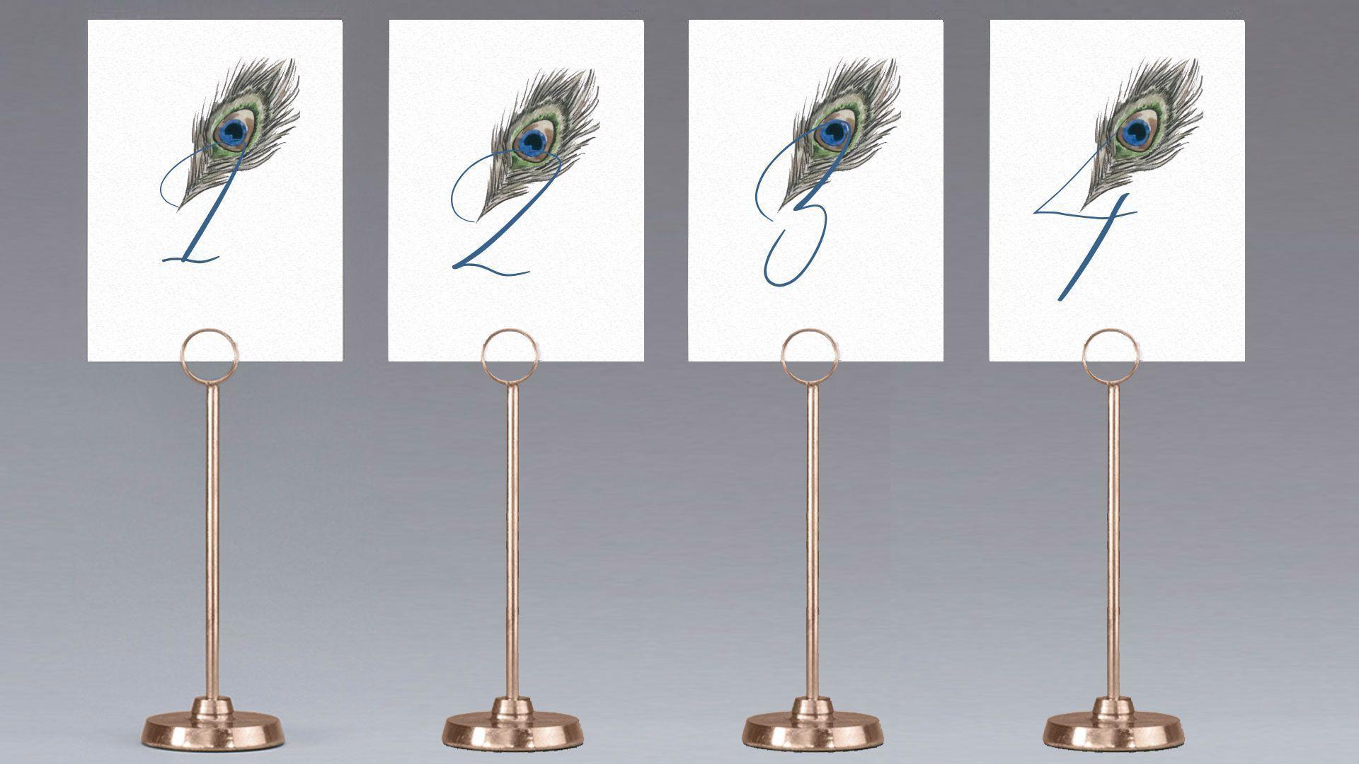mesero pavo real pájaro boda meso
