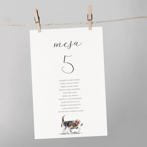 seating boda mesa beagle