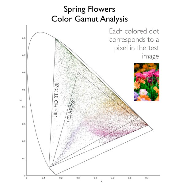 Wide Color Gamut Analysis Spring Flowers