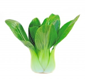 I kick off my December Food Challenge with a vegetable I've never tried -- Bok Choy.  Image courtesy of SOMMAI and FreeDigitalPhotos.net.