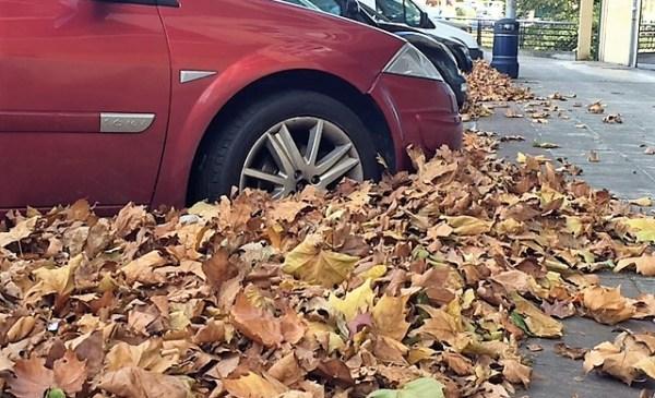 Las hojas acumuladas semi-enterraban ayer los coches en Tabira FOTO: dotb.eus