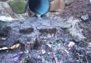[dotb.eus] Adecap Gazteak retira casi una tonelada de basura del río a su paso por Durango