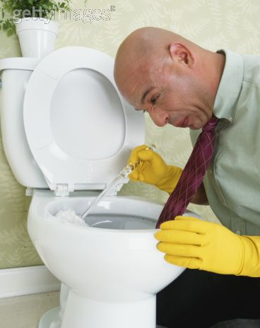 toiletcleaning