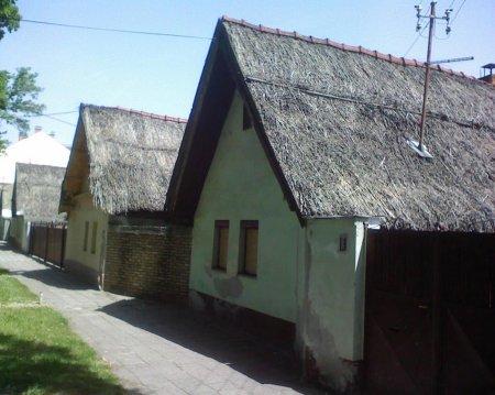 Novi SAd - Rotkvarija