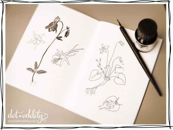 Botanical-Sketchbook