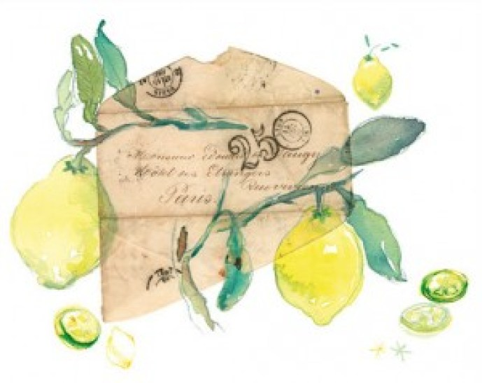 Lemon Paris by Lucile Prache
