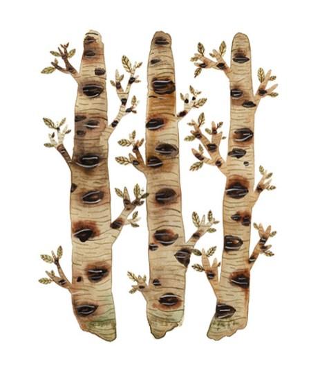 woods mossy birch trees by Holly Ward Bimba