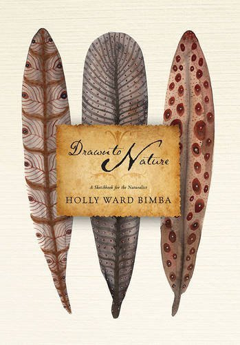 Drawn to Nature by Holly Ward Bimba