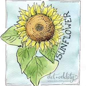 sunflower by Maria Larsson
