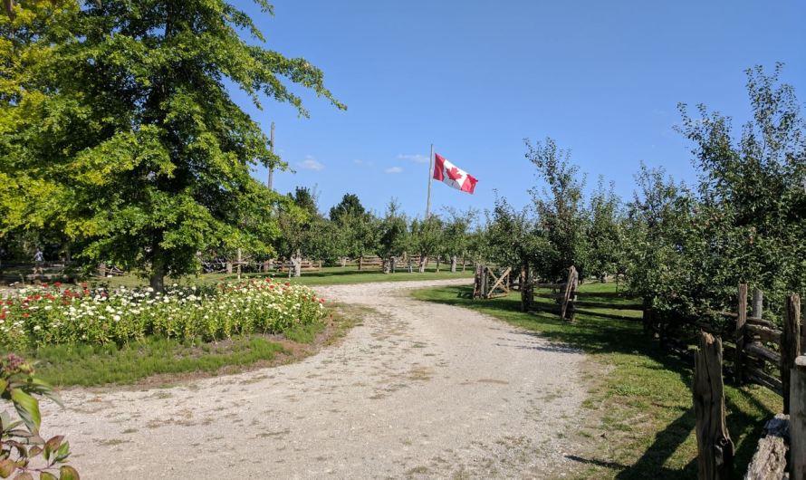 Рейд на канадскую ферму