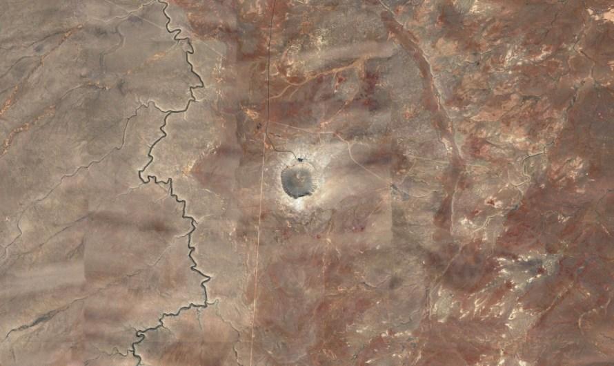 Проект «Аризона» и окаменелый лес