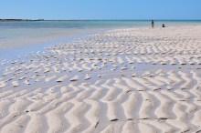 """Durante a maré baixa, locais vão ao mar para pegar """"minhocas"""" para transformar em comida"""