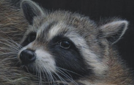 racoons_diptych_detail
