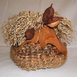 Twining Texture: A Natural Fiber Basket @ Hoffman Center for the Arts – Manzanita, Oregon