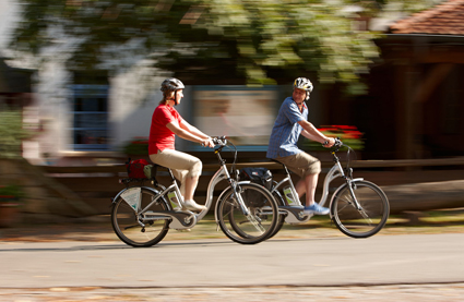 ebike bici elettrica