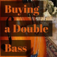 Buying a Double Bass Part I - Three Basic Categories