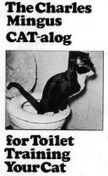 cat_toilet.jpg