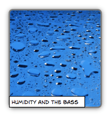 humidity double bass.png
