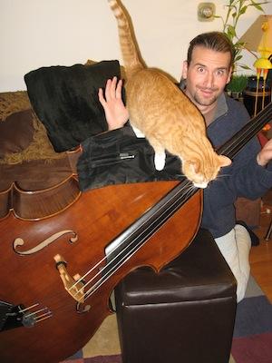 cats 7.jpg