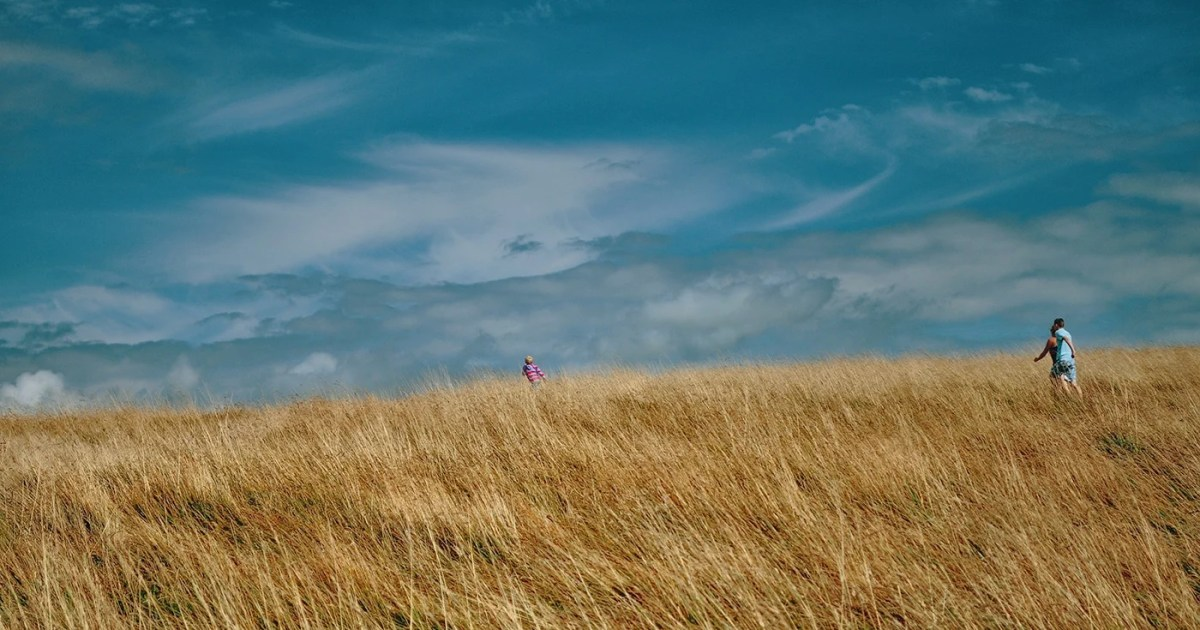 DoubleBlind: Parents and their child playing in a field. In this article, Double Blind discusses how more parents take psychedelics thank you would think.