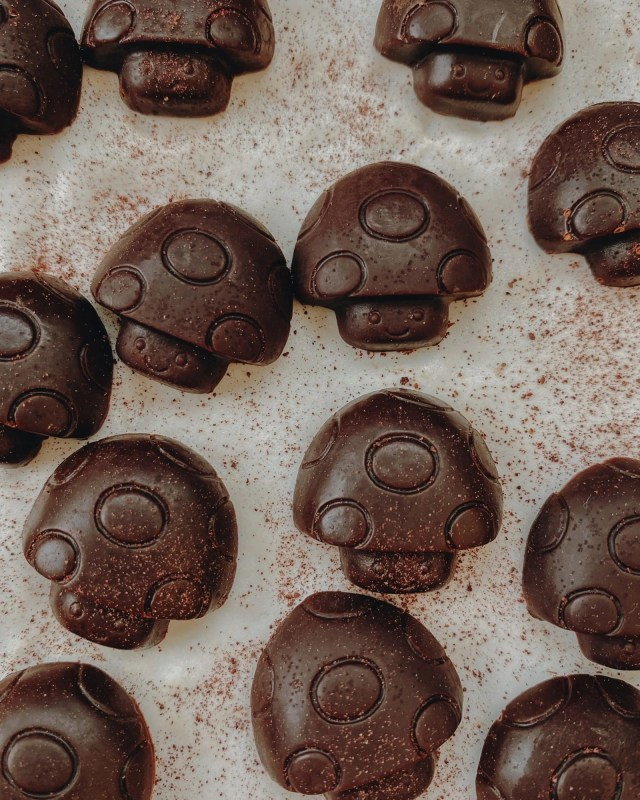 Doubleblind: A Picture of Mushroom Chocolates