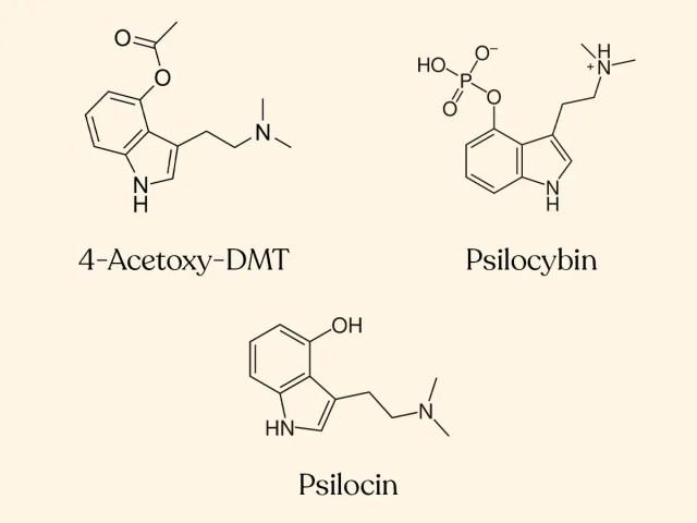 DoubleBlind: 4-Acetoxy-DMT, Psilocybin, and Psilocin chemical structures.
