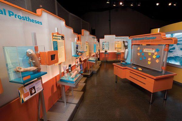 Science Body Works Exhibit