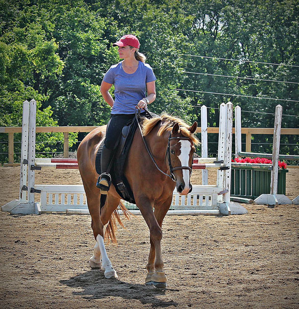 Horse Boarding  Stables  Double Eagle Ranch Stables and