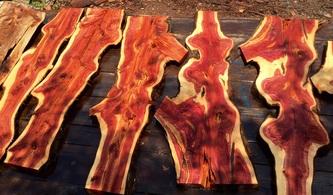Red Cedar Slabs For Sale